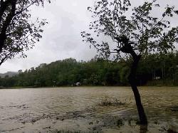 লামার নিম্নাঞ্চল প্লাবিত,১০হাজার মানুষ পানিবন্দী