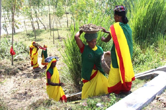 ঠাকুরগাঁওয়ে নারী শ্রমিকদের মজুরি এক শত পঞ্চাশ টাকা